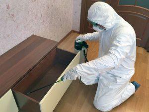 Уничтожение клопов в Минске и РБ