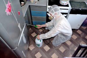 Уничтожение тараканов в Минске и РБ